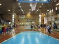 2010_0227_Basket-013