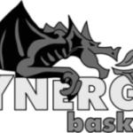 logo_synergy_gray